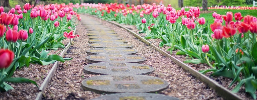 This summer, don't leave your flowerbeds looking ho-hum. Check out these 5 gorgeous garden walkway ideas: